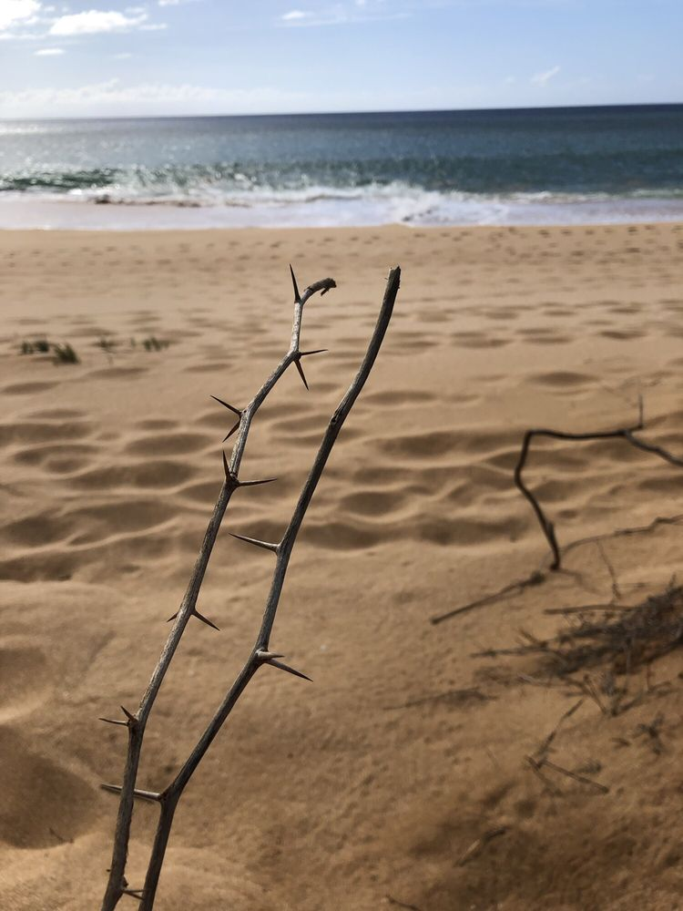 Papohaku Beach and Beach Park: West Molokai, Maui, HI