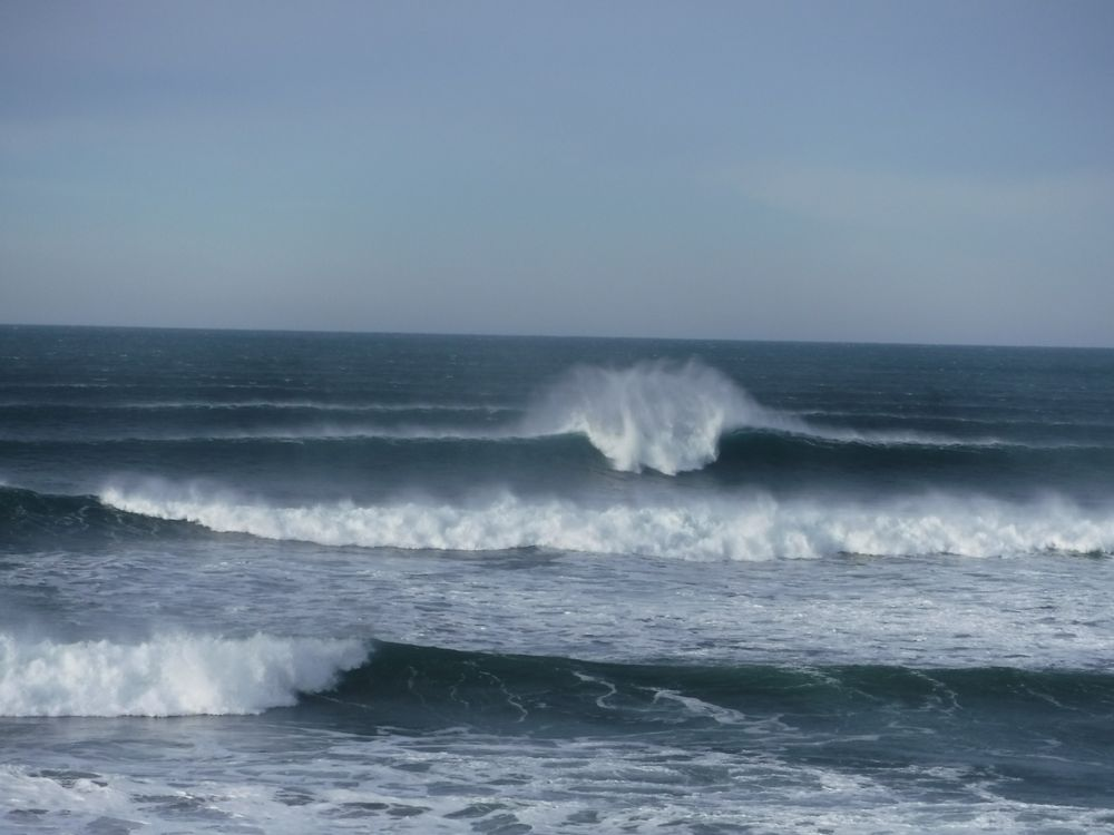 North Coast Surf: 773 Point Brown Ave NW, Ocean Shores, WA