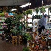 Photo Of King S Nursery Santa Rosa Ca United States
