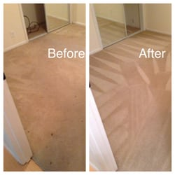 Pacific Steam Carpet Cleaning 22 Photos Carpet