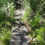 ... Photo Of Kula Botanical Gardens   Kula, HI, United States ...