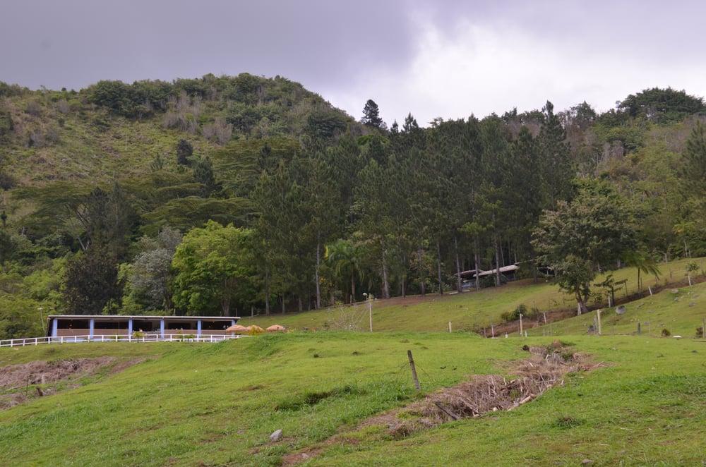 Hacienda Morena: carr 10 k.m. 28, Adjuntas, PR