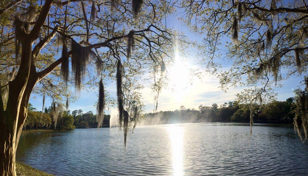 Social Spots from Lake Ella Park
