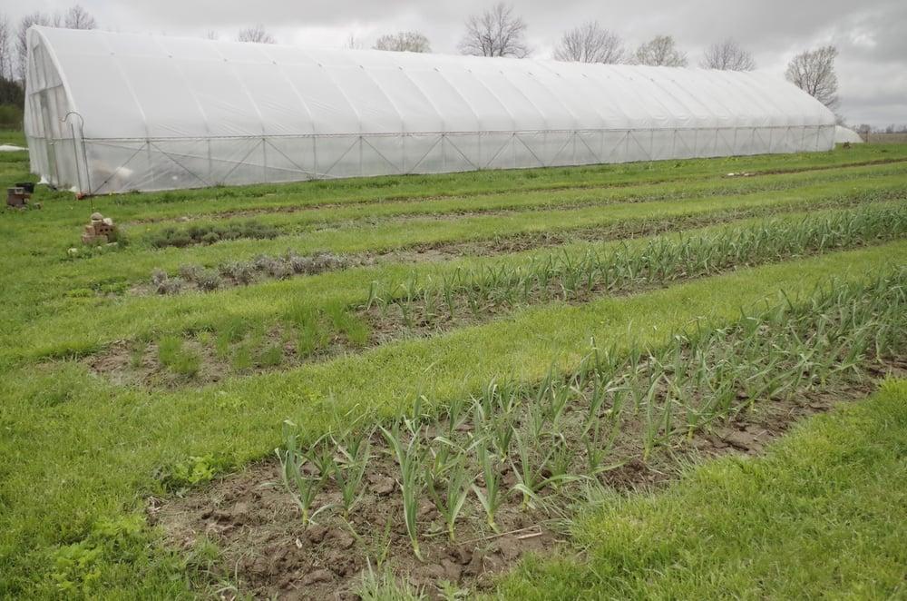 Boulder Belt Eco-Farm: 3257 US 127 N, Eaton, OH