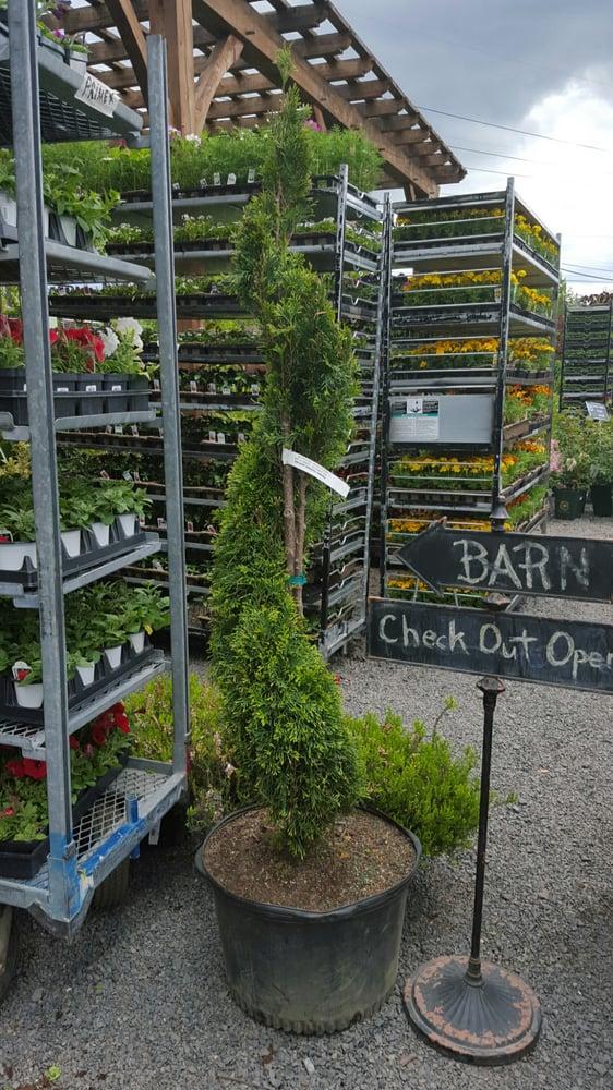 Primex Garden Center - 25 Photos & 33 Reviews - Nurseries ...