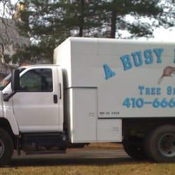 A Busy Beaver Tree Service - Tree Services - 13 Beaver Run Ln ...