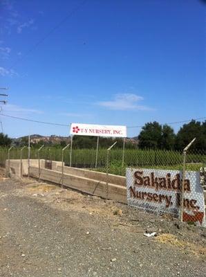 Photo Of Ty Nursery Trabuco Canyon Ca United States