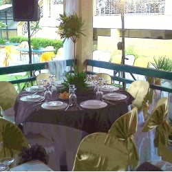 winter garden tent table chair rentals party supplies 547