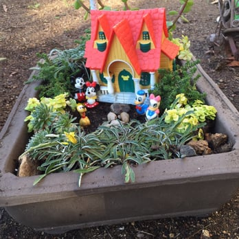 Photo Of El Plantio Nursery Escondido Ca United States I Bought This