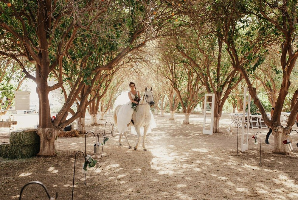 The Orchards Ranch-Wedding Venue in the Orchard