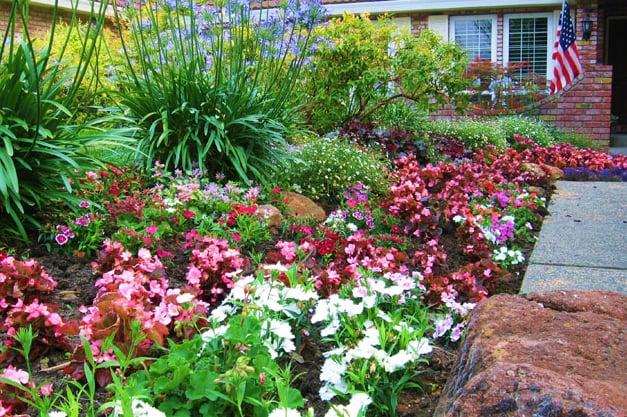 Botanica landscapes gardeners 5411 colusa hwy yuba for Landscaping rocks yuba city ca