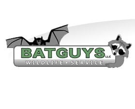 Bat Guys