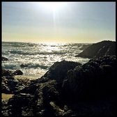 Sonoma Coast State Beach Bodega Head 203 Photos Amp 69