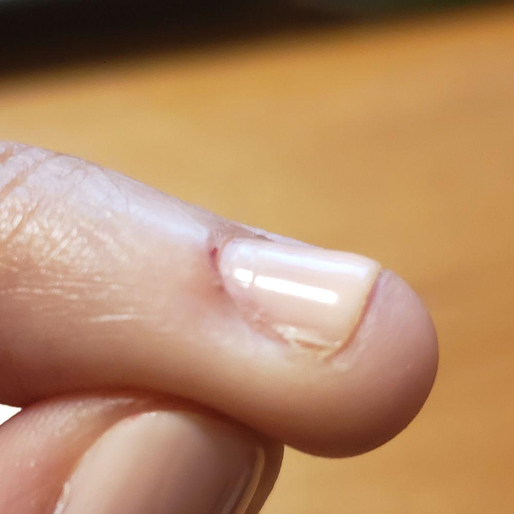 OMG My Nails: 12705 Shoppes Ln, Fairfax, VA