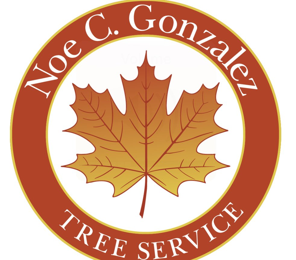 Noe C Gonzalez Tree Service