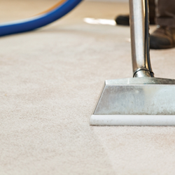 professional carpet cleaning ipswich qld
