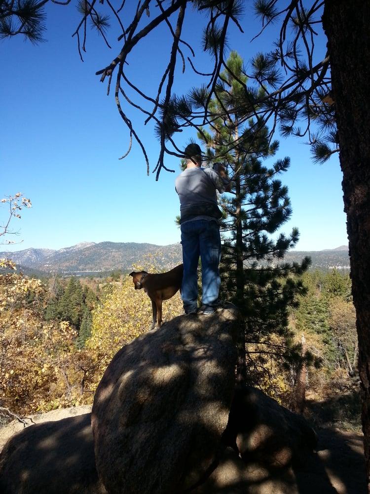 Pine knot trail 66 foto e 41 recensioni escursionismo for Cabine di noleggio in big bear ca
