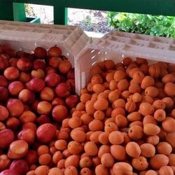 Photo Of Garden Of Eden Organics   Escondido, CA, United States. New Harvest