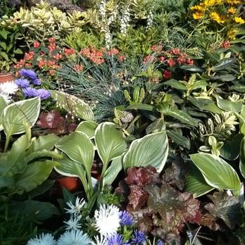 Gartencenter rennbahnstra e g rtnerei gartencenter for Pflanzencenter berlin