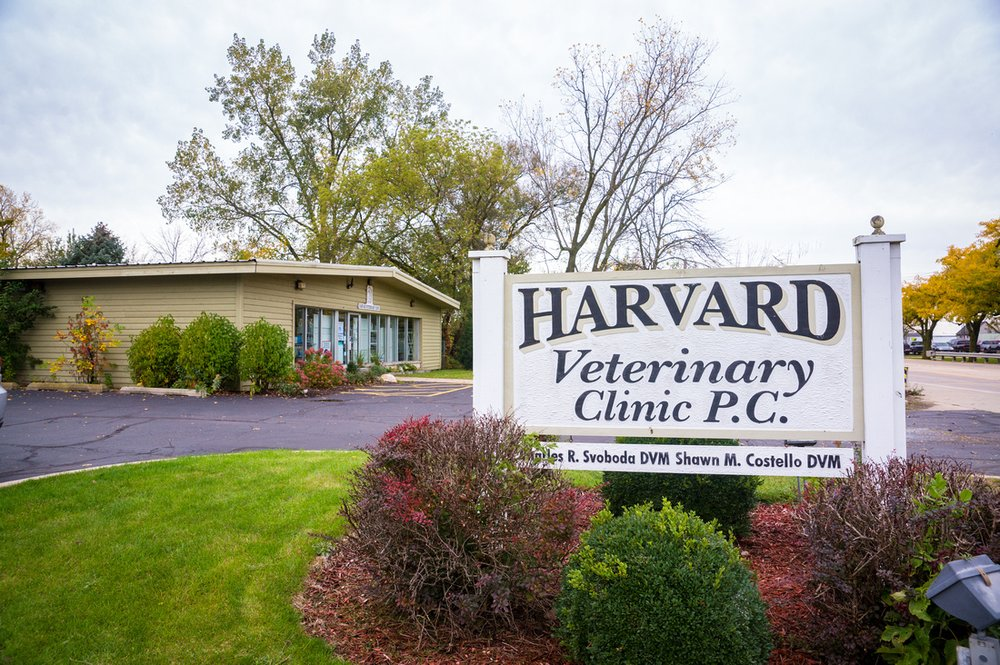 Harvard Veterinary Clinic: 712 W Brink St, Harvard, IL