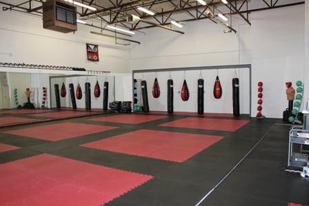 Top Level MMA Training Center: 7038 N Milwaukee Ave, Niles, IL