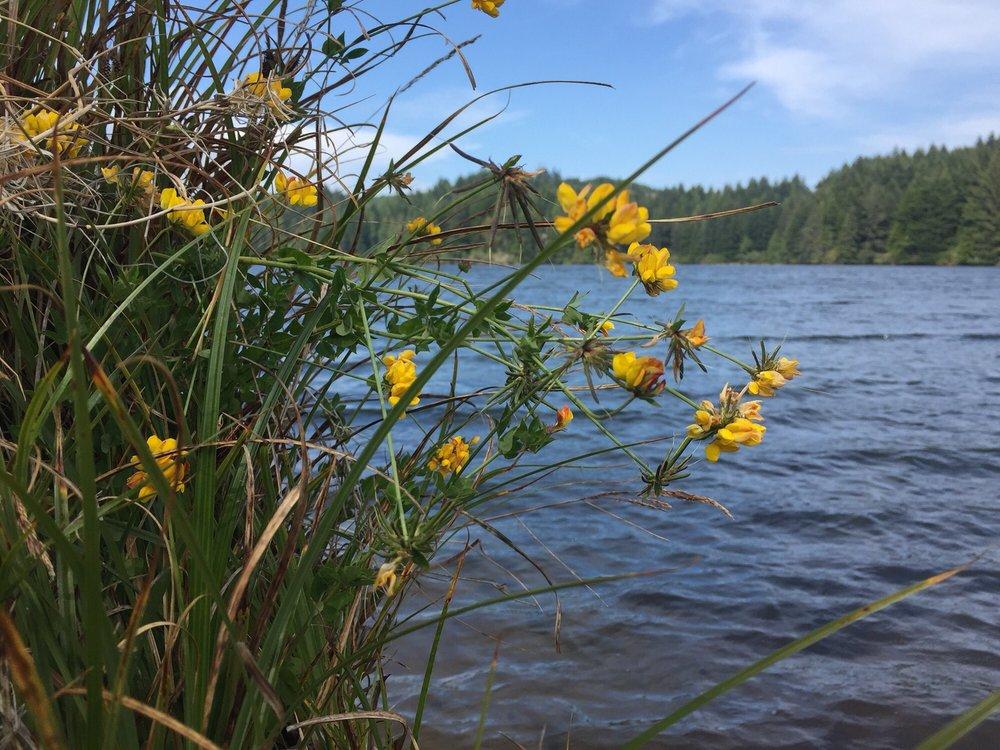 Eel Lake: 72549 US-101, Lakeside, OR