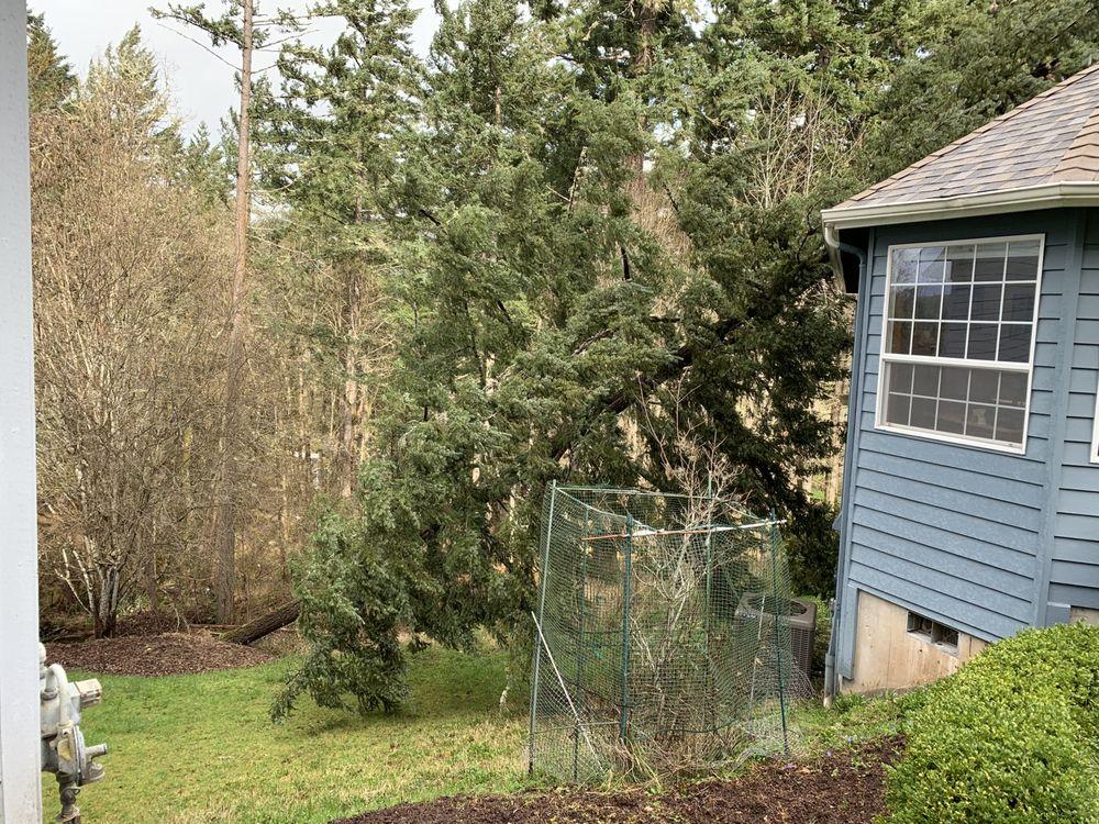 Peak Tree Care: 23054 Old Peak Rd, Philomath, OR