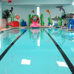 Sea star swim center escola de nata o 4000 cartwright - Star city swimming pool ...