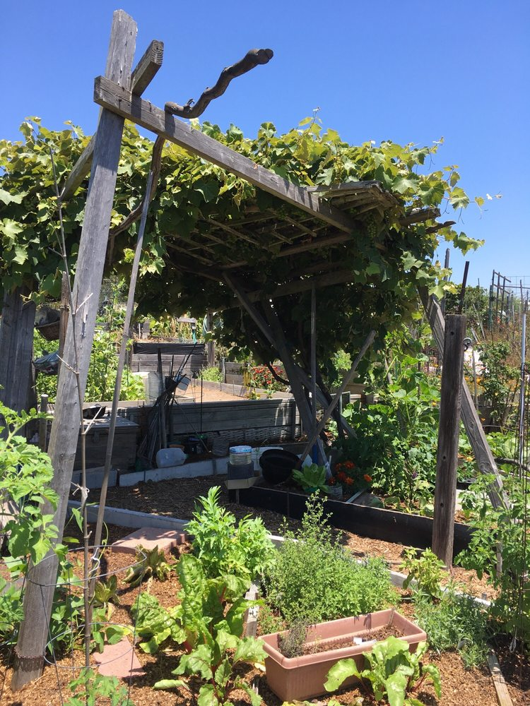 Ocean View Farms: 3300 S Centinela Ave, Los Angeles, CA