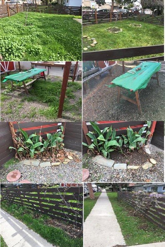 Shellback Gardening: Arroyo Grande, CA