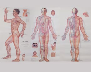 Qi Li Acupuncture: 257 W 94th St, New York, NY