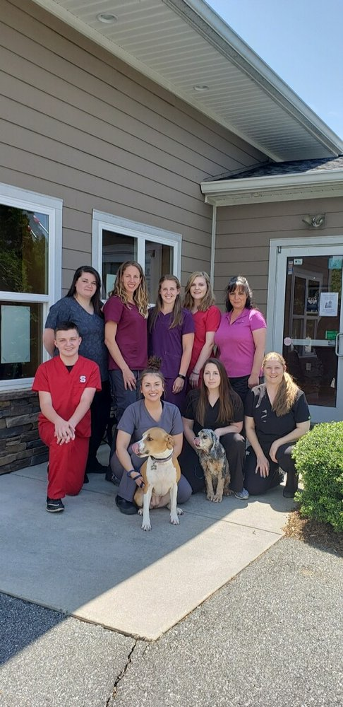 Animal Hospital Of Lewisville: 6260 Shallowford Rd, Lewisville, NC
