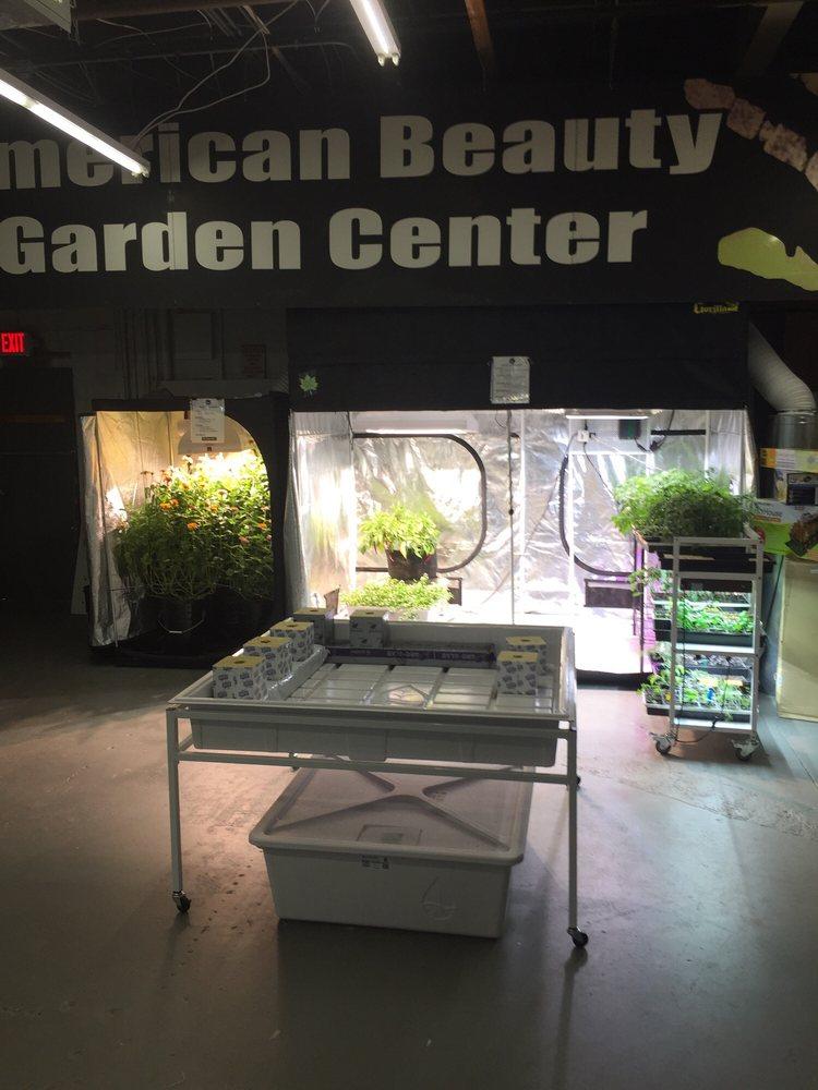 American Beauty Garden Center