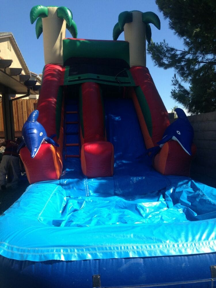 Dolphins Water Slide - Yelp