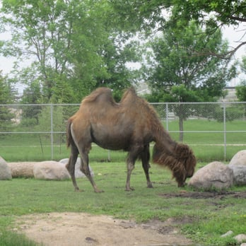 Photo Of Red River Zoo Fargo Nd United States