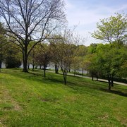 Bee Tree Park - 13 Photos & 10 Reviews - Parks - 2701 Finestown Rd ...