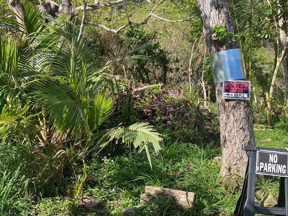 Crouching Lion Hike: 51-676 Kamehameha Hwy, Kaaawa, HI