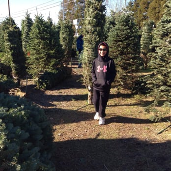 photo of mikeys christmas trees sacramento ca united states