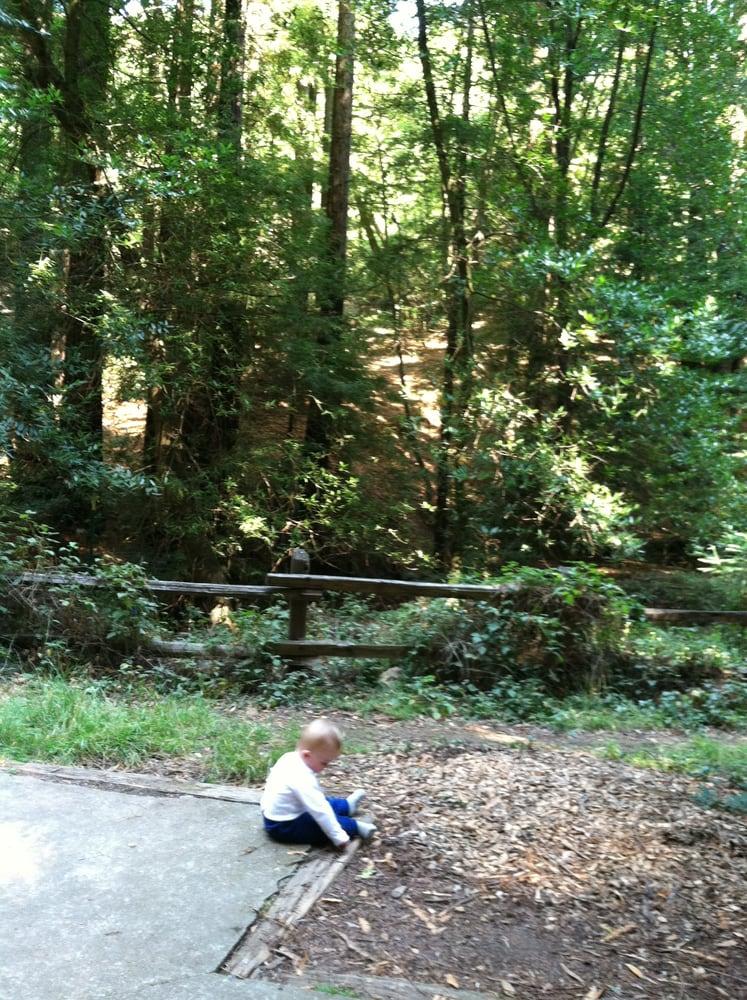 Summer Camp Redwood City Ca