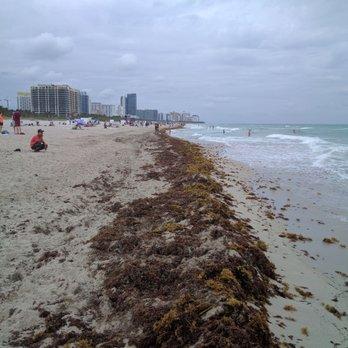 Photo Of South Beach Miami Fl United States