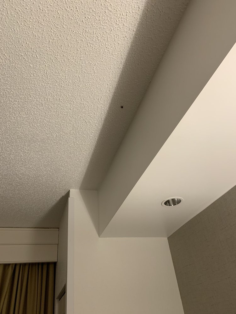Photo of SpringHill Suites: Sterling, VA