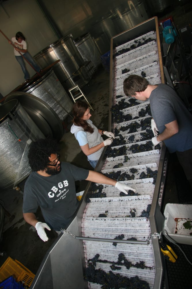 Winemaker Tours: Portland, OR