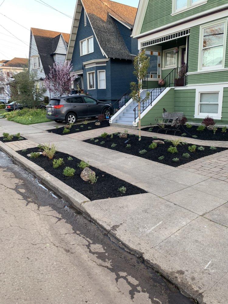 JV Gardening & Landscaping