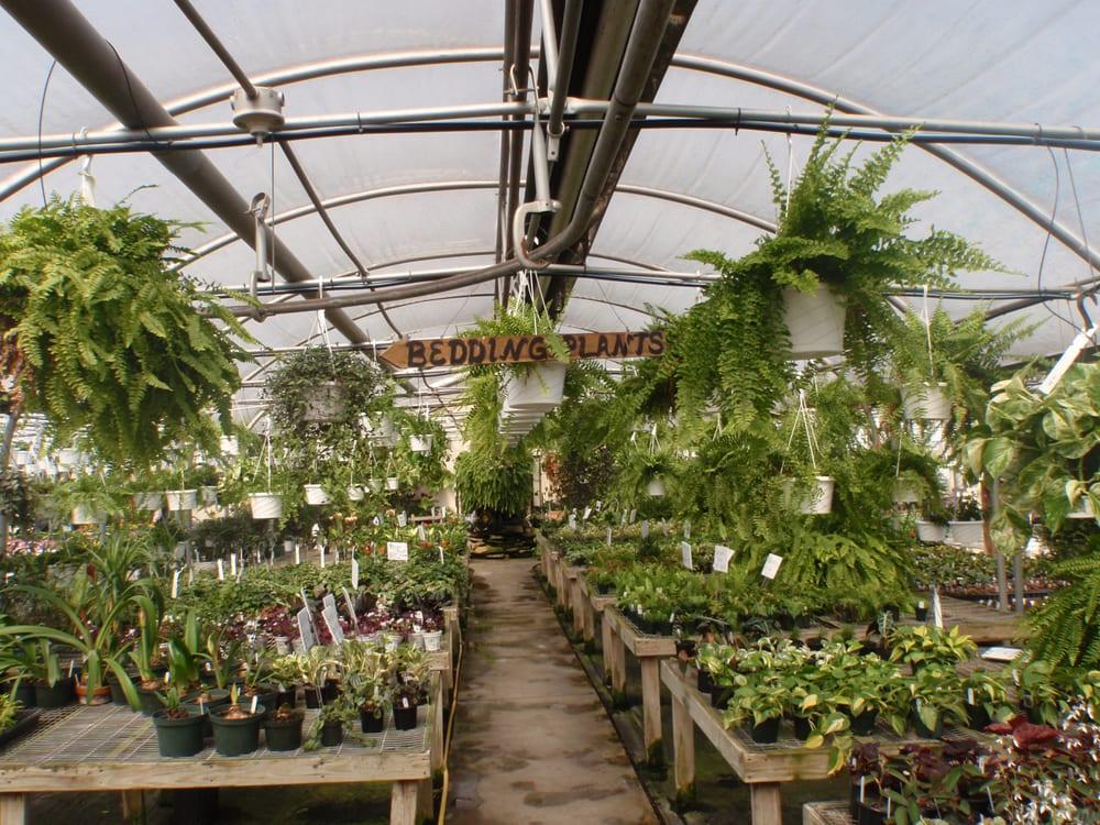 Spring Farm Greenhouse: 2190 Hickory Bottom Rd, Martinsburg, PA