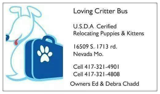 Loving Critter Bus: Nevada, MO