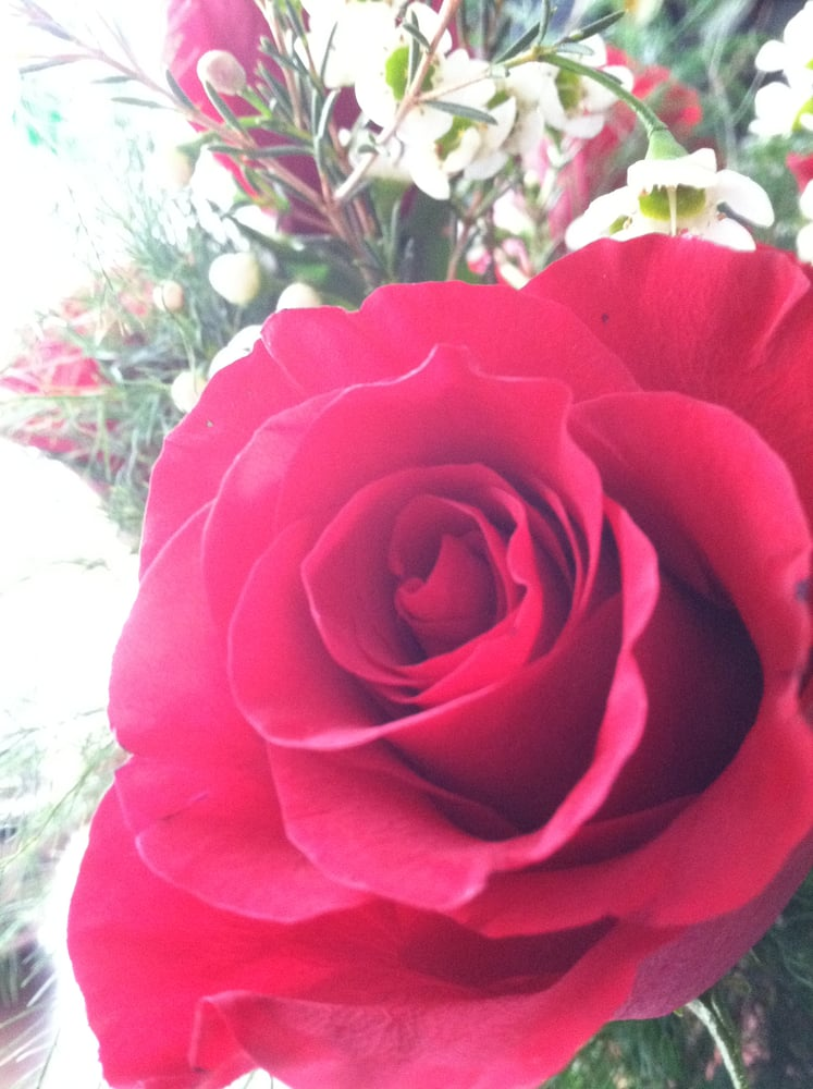 Berkshire Flower: 910 South St, Pittsfield, MA