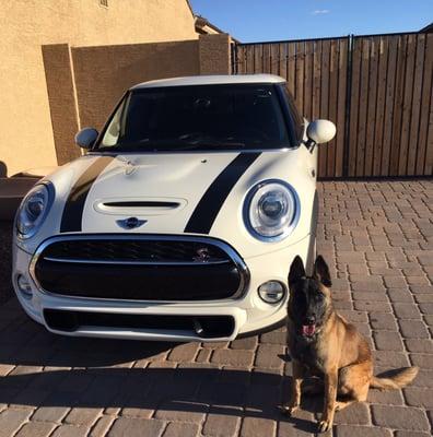 Mini North Scottsdale >> Mini North Scottsdale 7101 East Chauncey Lane Phoenix Az Auto