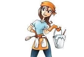 Domestic Divas Cleaning Services: 1011 Shelter Ln, Lansing, MI