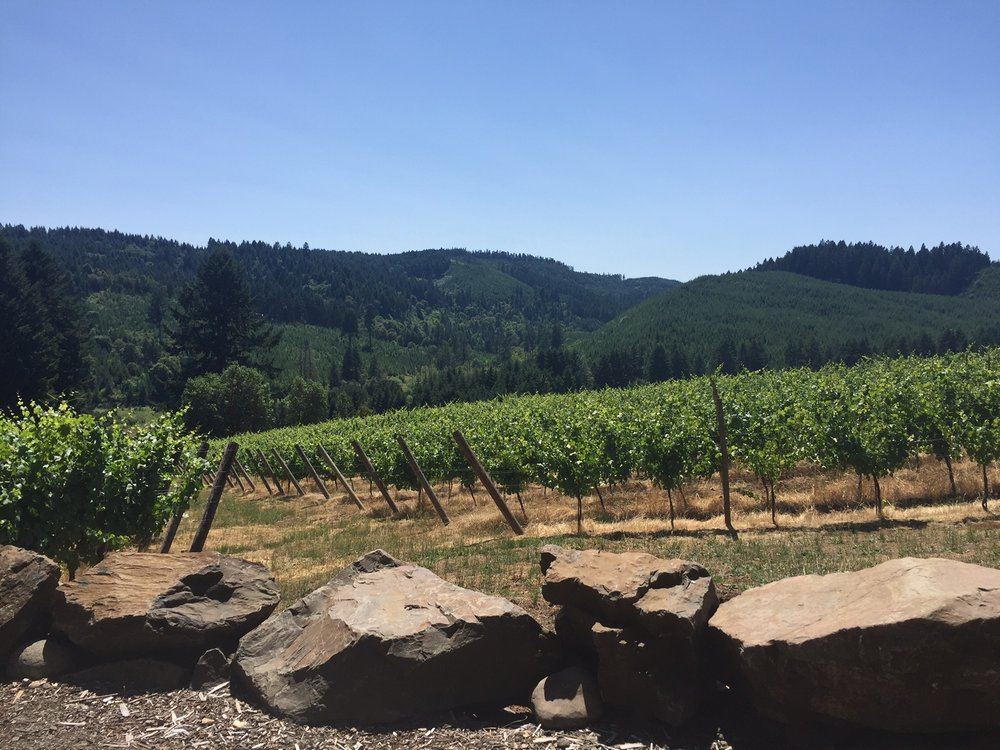 High Pass Winery: 24757 Lavell Rd, Junction City, OR