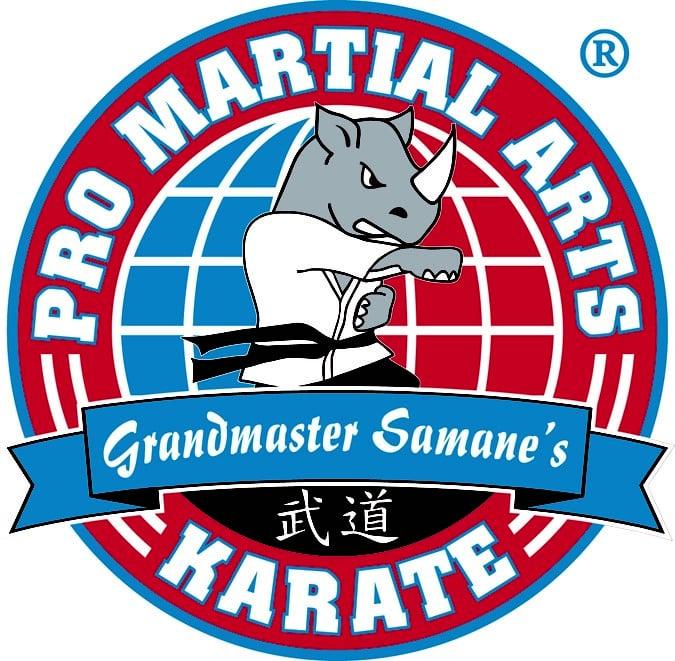 PRO Martial Arts - Bryn Mawr: 1111 W Lancaster Ave, Bryn Mawr, PA
